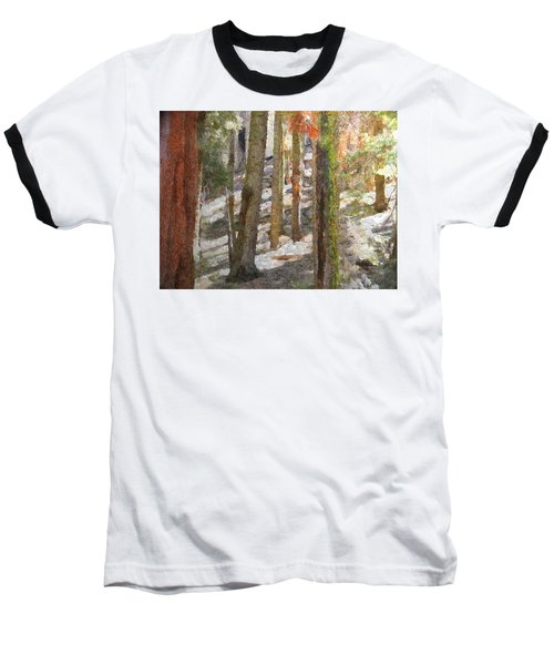 Forest For The Trees Baseball T-Shirt by Jeff Kolker