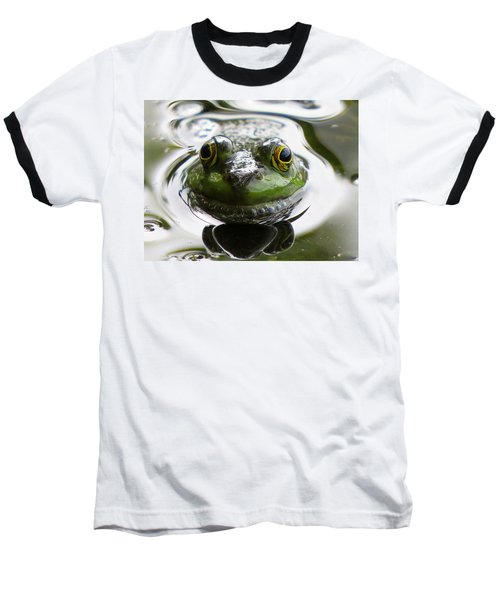Frog Kiss Baseball T-Shirt by Dianne Cowen