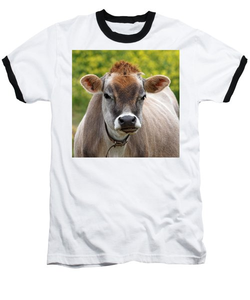 Funny Jersey Cow -square Baseball T-Shirt