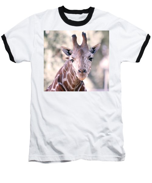 Baseball T-Shirt featuring the pyrography Giraffe Staring  by Shoal Hollingsworth