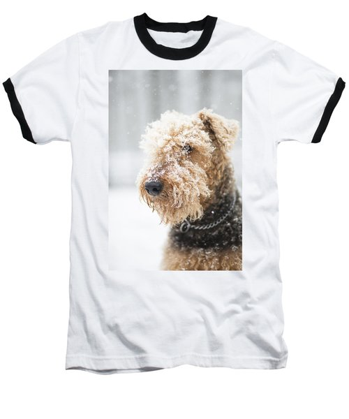 Dog's Portrait Under The Snow Baseball T-Shirt