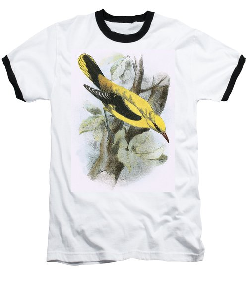 Golden Oriole Baseball T-Shirt by English School