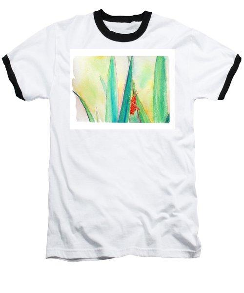 Grasshopper Baseball T-Shirt by C Sitton
