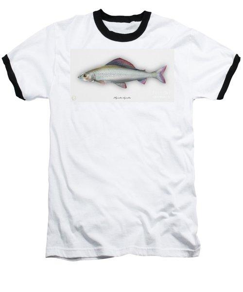 Grayling - Thymallus Thymallus - Ombre Commun - Harjus - Flyfishing - Trout Waters - Trout Creek Baseball T-Shirt