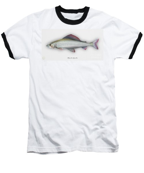 Grayling - Thymallus Thymallus - Ombre Commun - Harjus - Flyfishing - Trout Waters - Trout Creek Baseball T-Shirt