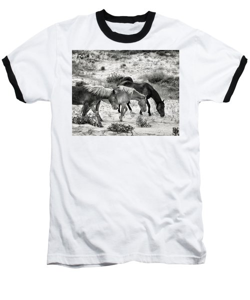 Grazing Baseball T-Shirt by William Beuther