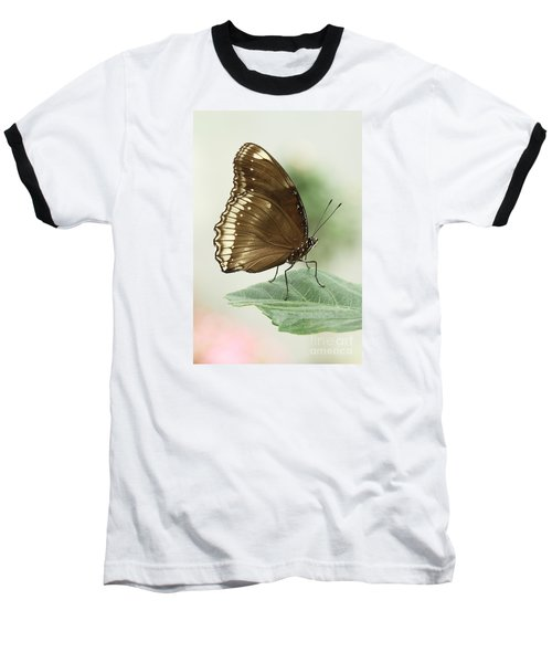 Great Eggfly Butterfly Baseball T-Shirt by Judy Whitton