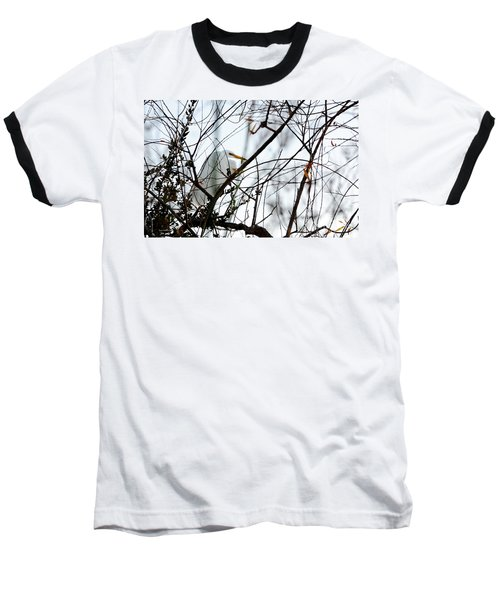 Baseball T-Shirt featuring the photograph Great Egret Roosting In Winter by Susan Wiedmann