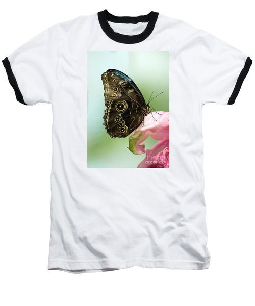 Baseball T-Shirt featuring the photograph Hidden Beauty Of The Butterfly by Debbie Green