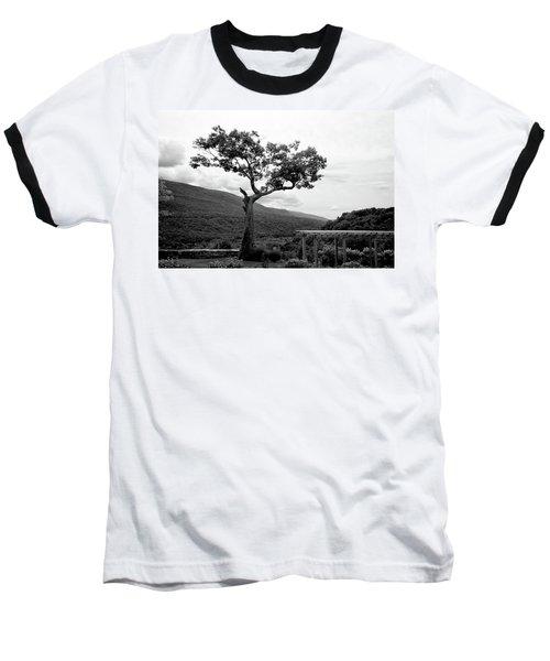 Hildene Tree 5689 Baseball T-Shirt