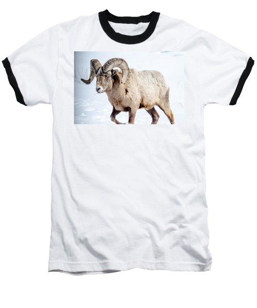 Big Horns On This Big Horn Sheep Baseball T-Shirt