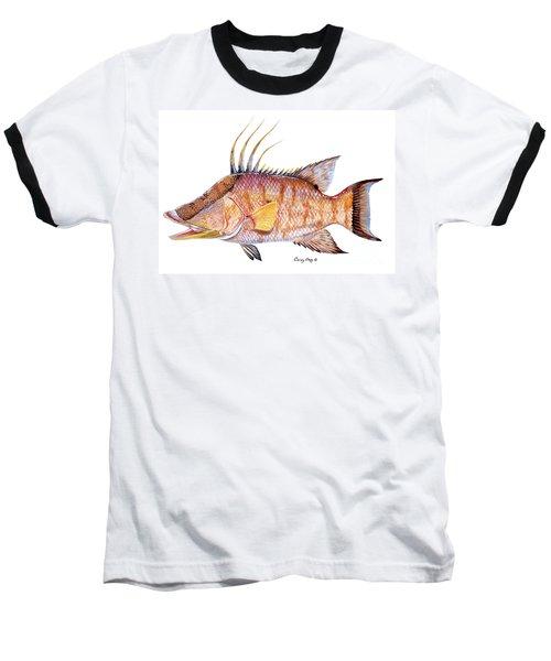 Hog Fish Baseball T-Shirt by Carey Chen