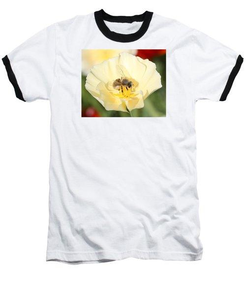 Honeybee On Cream Poppy Baseball T-Shirt by Lucinda VanVleck