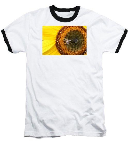 Honeybee On Sunflower Baseball T-Shirt by Lucinda VanVleck