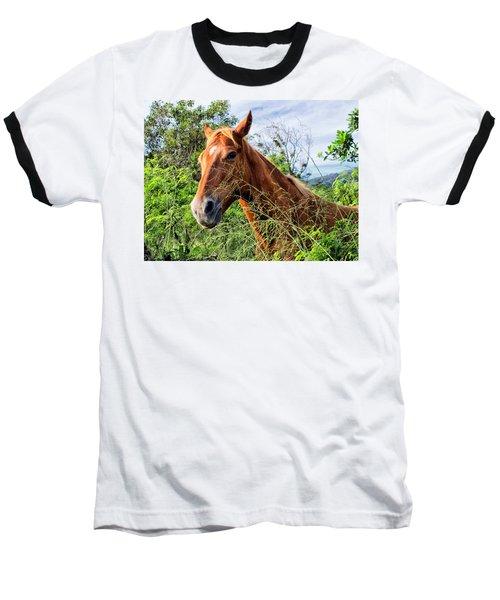 Baseball T-Shirt featuring the photograph Horse 1 by Dawn Eshelman