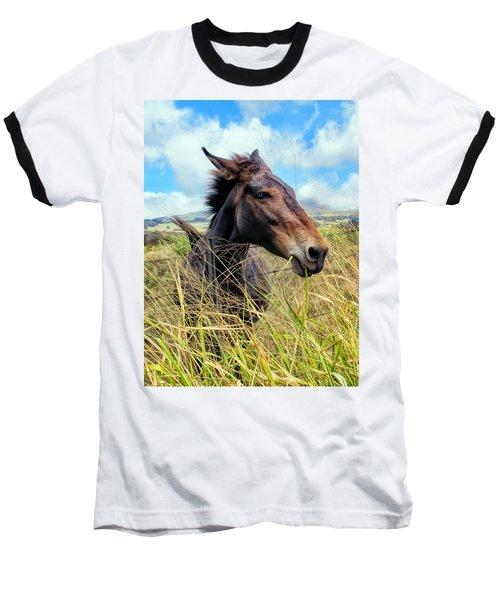Baseball T-Shirt featuring the photograph Horse 6 by Dawn Eshelman