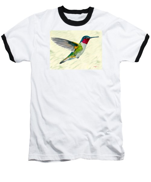 Da103 Broadtail Hummingbird Daniel Adams Baseball T-Shirt