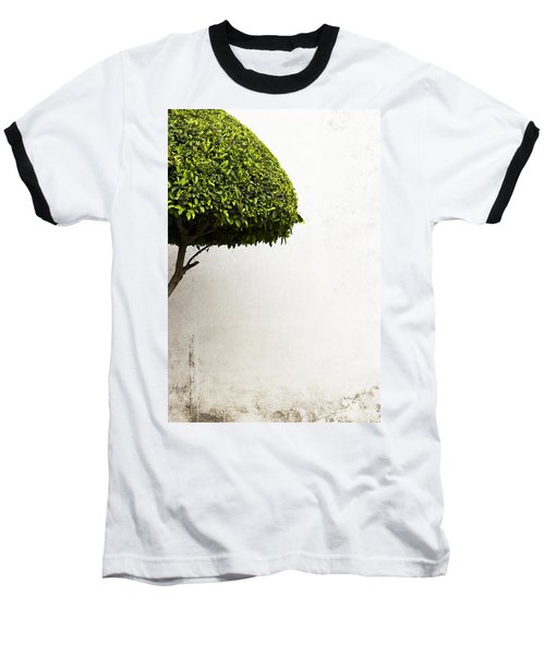 Hypnotic Tree Baseball T-Shirt
