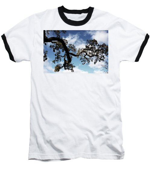 I Touch The Sky Baseball T-Shirt by Laurie Search