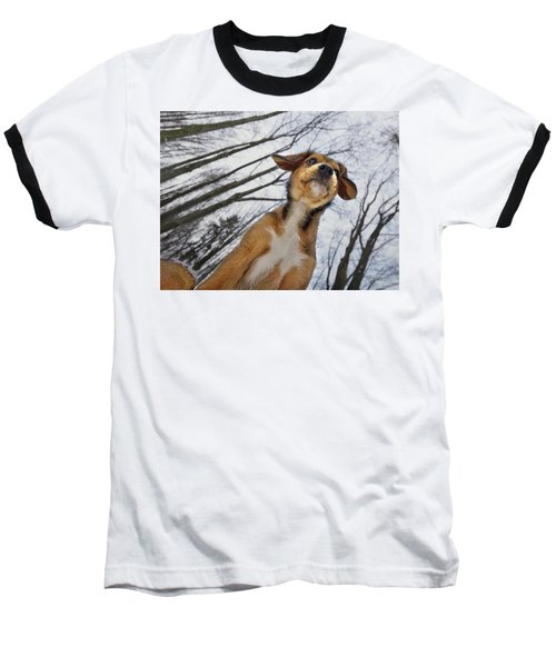 I Wish I Could Fly Baseball T-Shirt