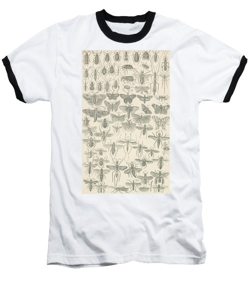 Insects Baseball T-Shirt