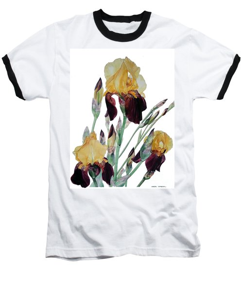 Watercolor Of Tall Bearded Iris In Yellow And Maroon I Call Iris Beethoven Baseball T-Shirt