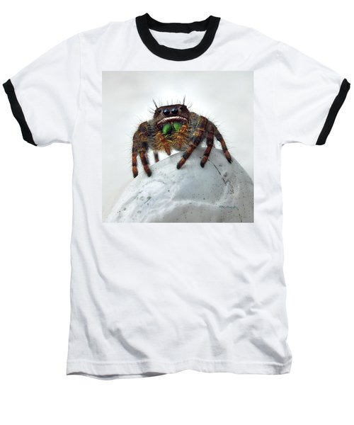 Jumper Spider 2 Baseball T-Shirt