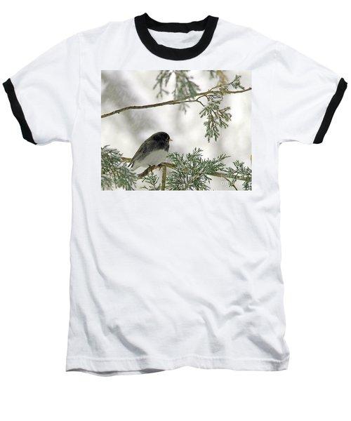 Baseball T-Shirt featuring the photograph Junco In Snowstorm by Paula Guttilla