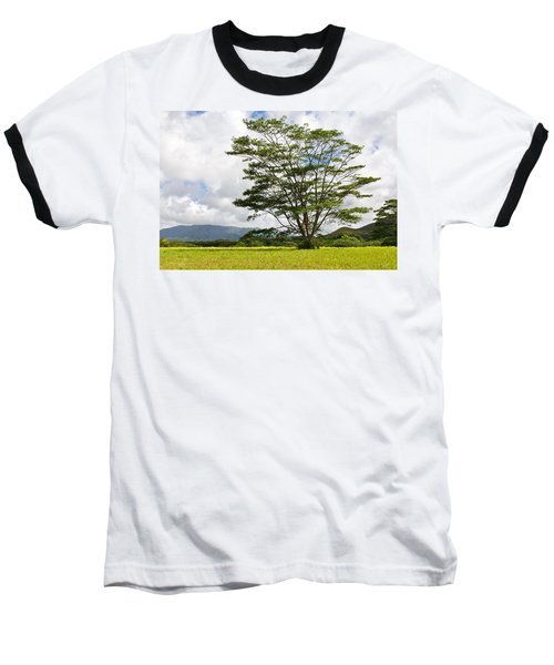 Kauai Umbrella Tree Baseball T-Shirt