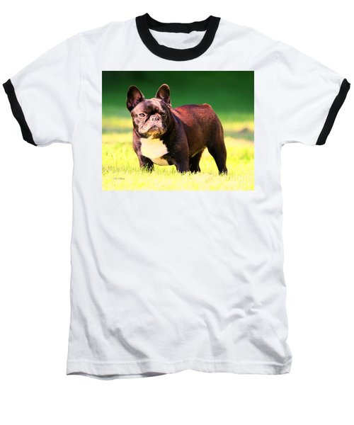 King's Frenchie - French Bulldog Baseball T-Shirt