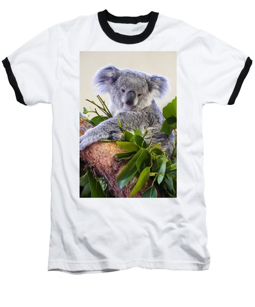 Koala On Top Of A Tree Baseball T-Shirt