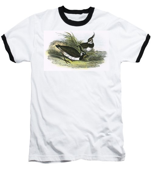 Lapwing Baseball T-Shirt by English School