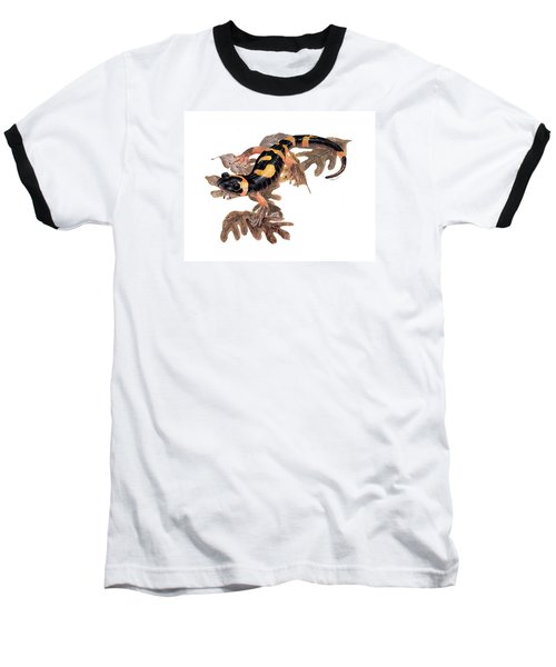 Large Blotched Salamander On Oak Leaves Baseball T-Shirt by Cindy Hitchcock