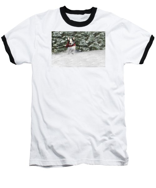 Snow Day Baseball T-Shirt by Shelley Neff