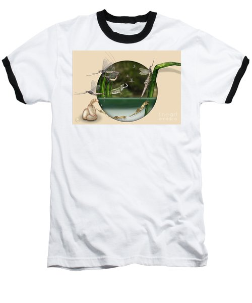 Life Cycle Of Mayfly Ephemera Danica - Mouche De Mai - Zyklus Eintagsfliege - Stock Illustration - Stock Image Baseball T-Shirt