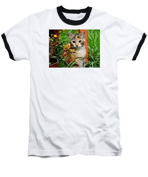 Baseball T-Shirt featuring the photograph Lily Garden Cat by VLee Watson