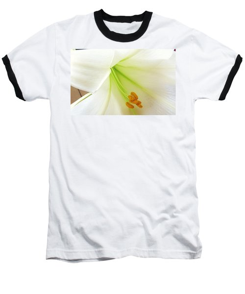 Lily Stamen Baseball T-Shirt by Fortunate Findings Shirley Dickerson
