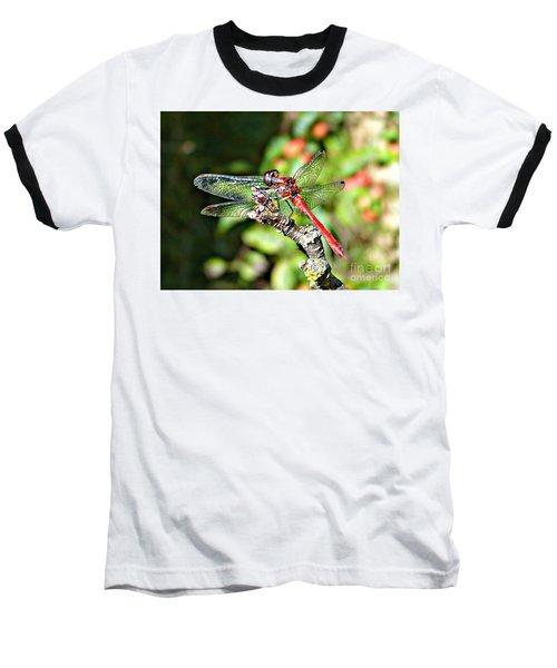 Little Dragonfly Baseball T-Shirt
