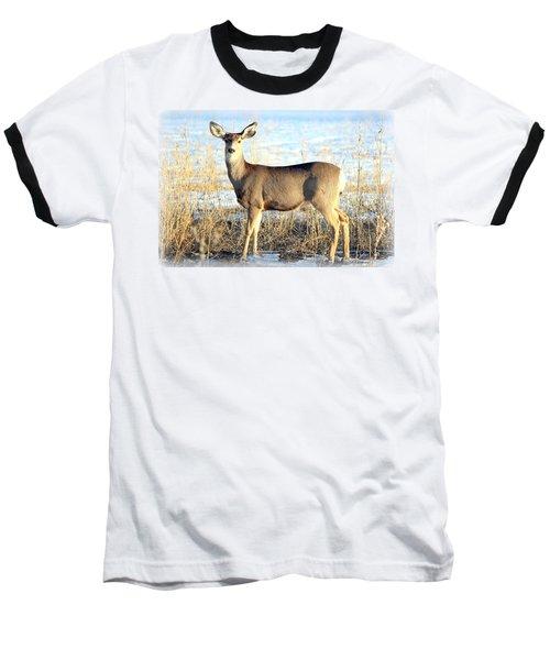 Lonesome Doe Sunset Baseball T-Shirt