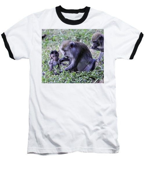 Baseball T-Shirt featuring the photograph Long Tailed Macaque Family by Shoal Hollingsworth