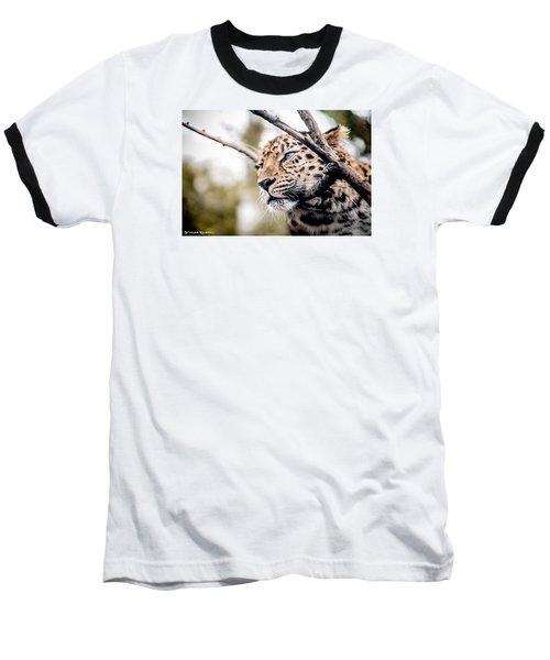 Baseball T-Shirt featuring the photograph Love Panther Iv by Stwayne Keubrick