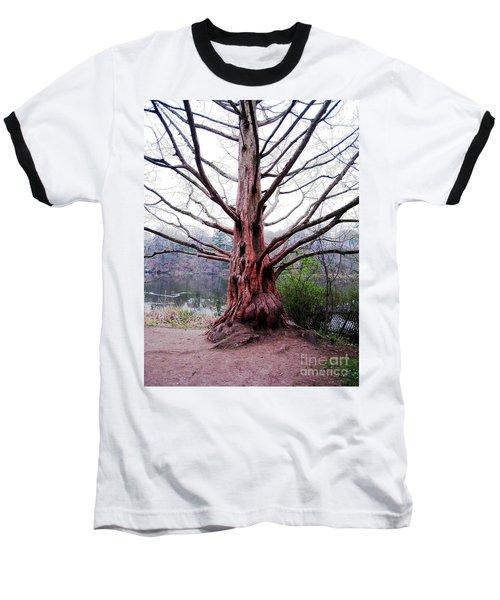 Baseball T-Shirt featuring the photograph Magic Tree by Nina Silver
