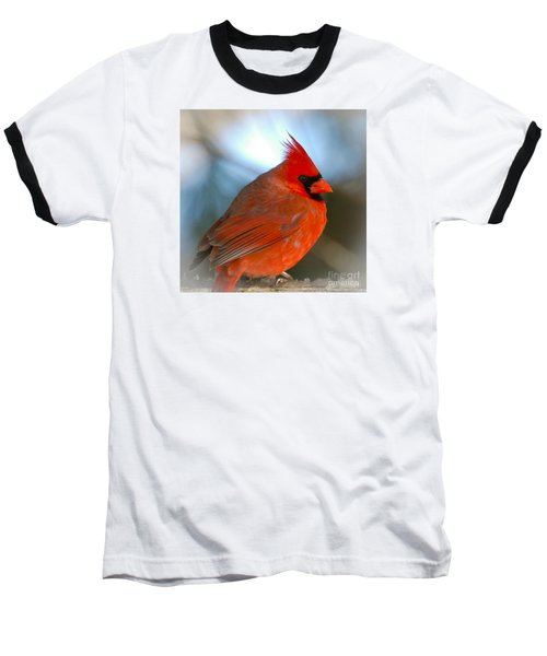 Male Cardinal  Baseball T-Shirt by Kerri Farley