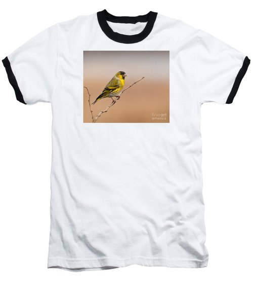 Male Eurasian Siskin Baseball T-Shirt