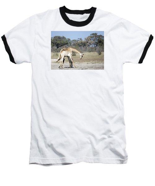 Male Giraffes Necking Baseball T-Shirt