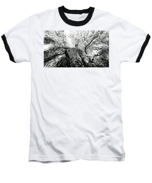 Baseball T-Shirt featuring the photograph Maple Tree Inkblot by CML Brown