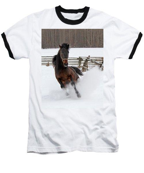 Marley And Me Baseball T-Shirt