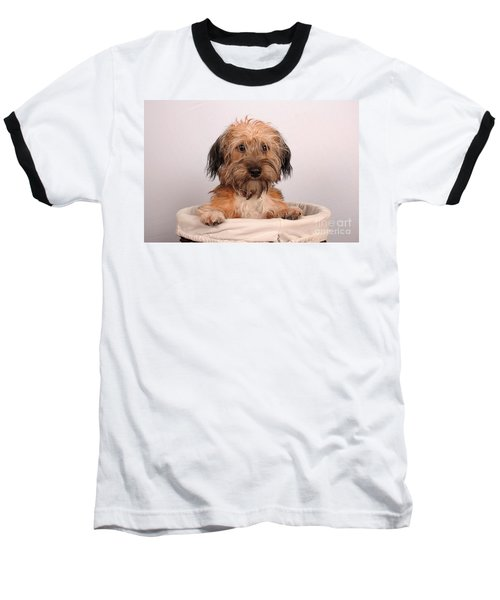 Baseball T-Shirt featuring the photograph Max 2 by Randi Grace Nilsberg