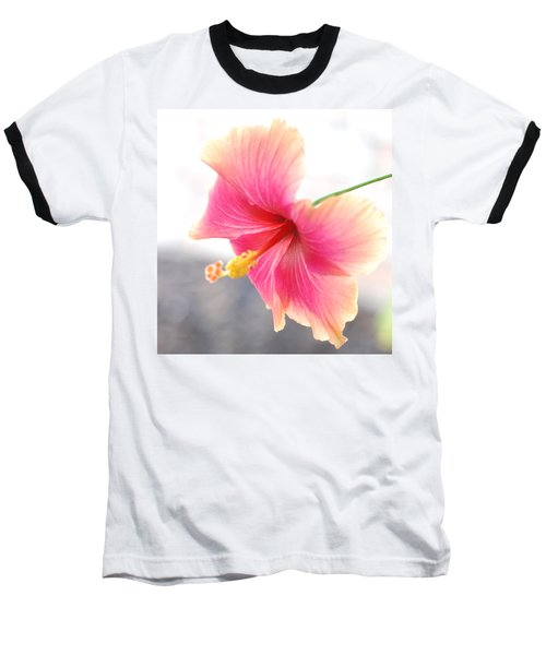 Morning Hibiscus In Gentle Light - Square Macro Baseball T-Shirt by Connie Fox