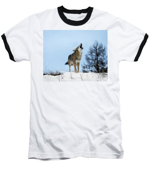 Baseball T-Shirt featuring the photograph Morning Howl by Jack Bell